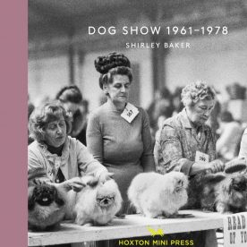 Dog Show by Shirley Baker book cover