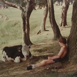 Shirley Baker photograph of boy with cow