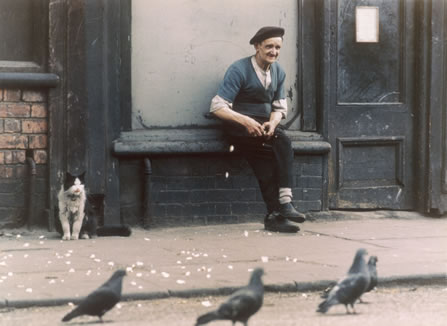 Man with pigeons by Shirley Baker